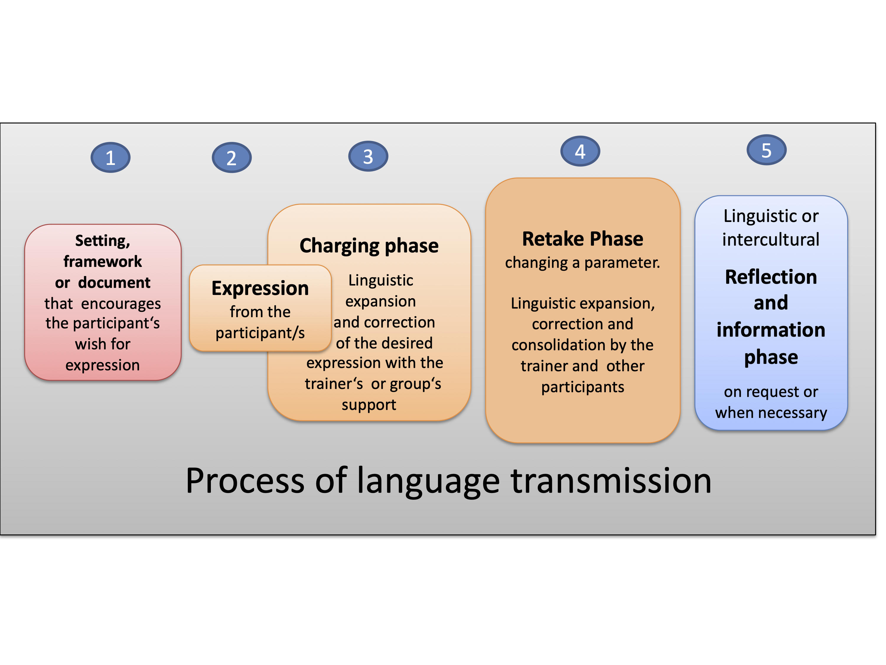 Process of language transmission